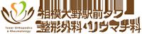 12995_logo